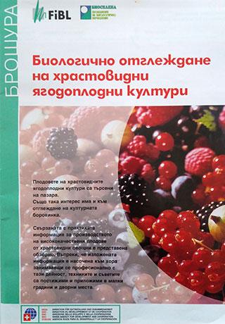 Биологично отглеждане на храстовидни ягодоплодни култури